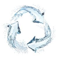 Recycle-Water